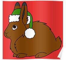 Brown Arctic Hare with Christmas Green Santa Hat Poster