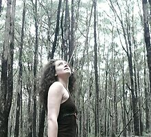 into the forest by Sorcha Whitehorse ©