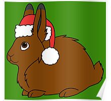 Brown Arctic Hare with Christmas Red Santa Hat Poster