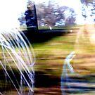 Train Seven by Robert Phillips