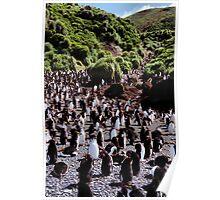 Royal Penguin Highway Poster