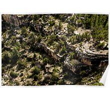 Canyon Dwelling Below Poster