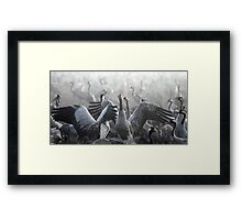 flock of Common crane (Grus grus) Silhouetted at dawn Framed Print