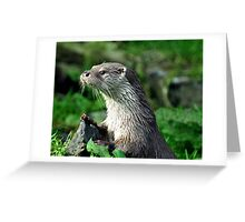 Male Otter Greeting Card