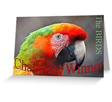 Challenge Birds Greeting Card