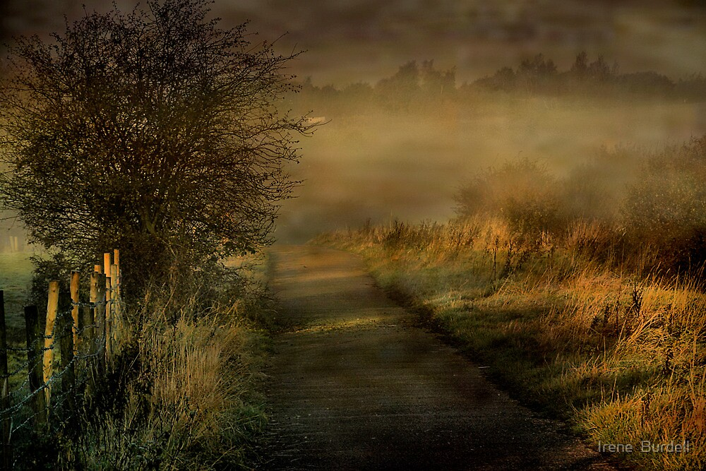 Morning Mist  in Lancashire  by Irene  Burdell