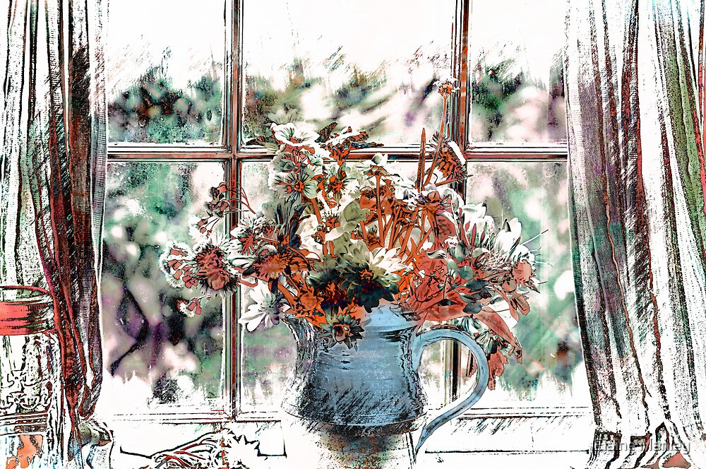 Window View by Elaine  Manley
