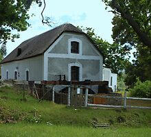 Die ou meul / The old mill by Antionette