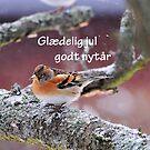 Vinter fugle by Heather Thorsen