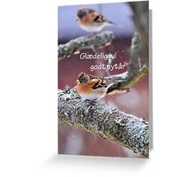 Vinter fugle Greeting Card