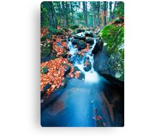 Streaming Live Canvas Print