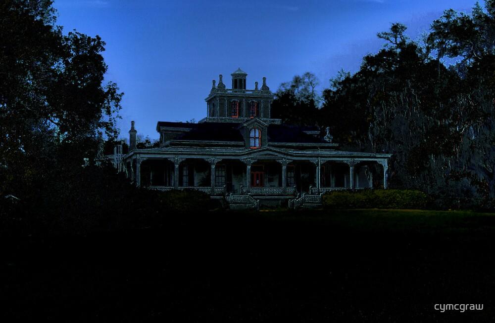 Joseph Jefferson Mansion (Rip Van Winkle Gardens) by Cynthia Broomfield