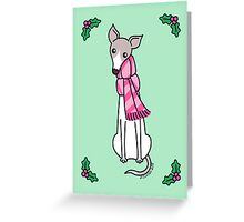 Christmas Greyhound - Gray and White Greeting Card