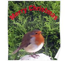 Christmas Robin card Poster