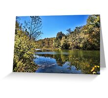 Gum Trees on the River Greeting Card