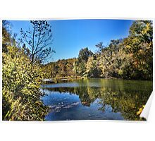 Gum Trees on the River Poster