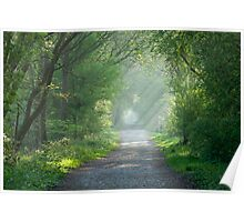 Countryside track and sunbeams Poster