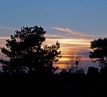 Sunset Over Ashdown by Sue Robinson