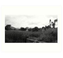 Desolate Fields Art Print
