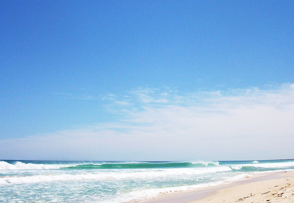 Empty Beach - Shark Recall 10 10 12 by Robert Phillips