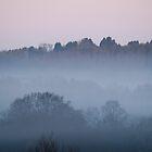 Dawn Mist portrait by Sue Robinson