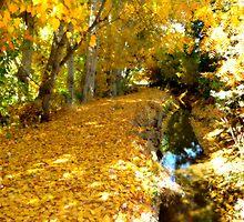 Nature's Golden Mattress by trueblvr