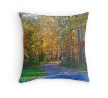 Autumn Road Throw Pillow