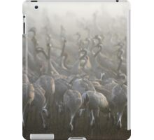 large flock of Common crane iPad Case/Skin