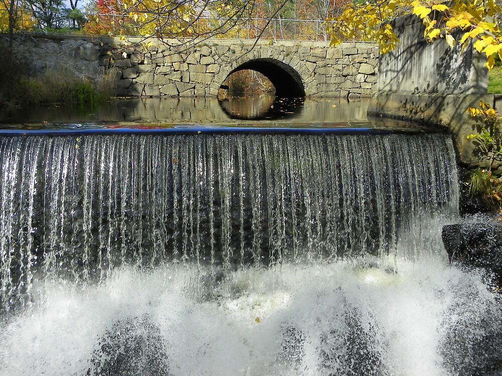 Waterfall on the Mousam Trail by irmajxxx