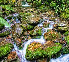Stream flowing over rocks by Heike Richter