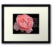Faded Rose Framed Print