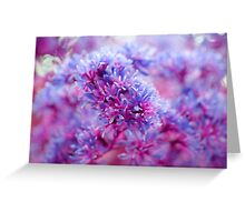 cotton candy bokeh Greeting Card