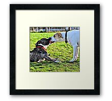 Sharing is Caring Framed Print