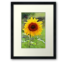 Sunflower, oilpainting style Framed Print