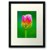 PopArt Tulip Framed Print
