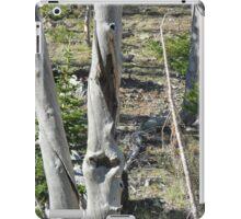 Forest iPad Case/Skin