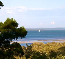 Moreton Bay from Ormiston House by Renee Hubbard Fine Art Photography