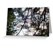 Bird In A Tree 13 10 12 Greeting Card