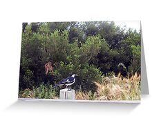 Beach Bird Eight - 14 10 12 Greeting Card