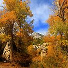 Eastern Nevada Landscapes  by Arla M. Ruggles