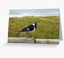Beach Bird Four - 14 10 12 Greeting Card