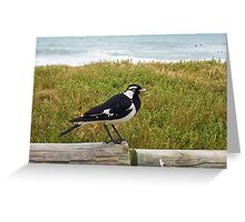 Beach Bird Four - 14 10 12 Greeting Card
