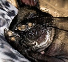 Turn Out that Light & Let Me Sleep Please! by Rhonda Strickland