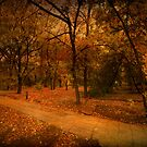 Autumn Path by Svetlana Sewell