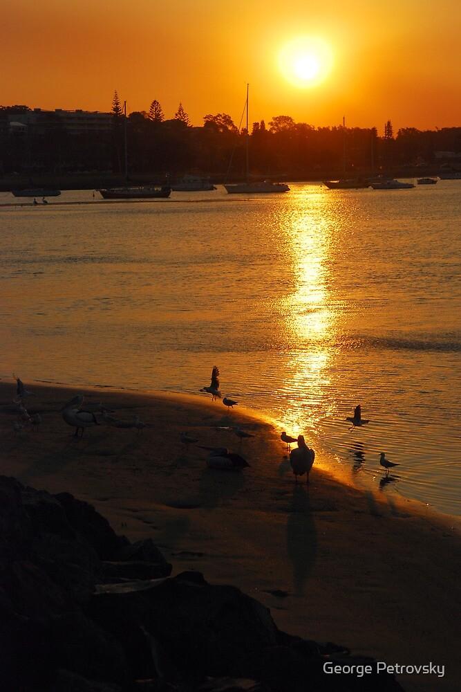 Smoky Port Sunset #1 by George Petrovsky