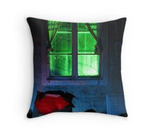 21.10.2012: One Night in Abandoned Farm House II Throw Pillow