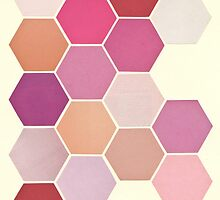 Shades of Pink by Cassia Beck