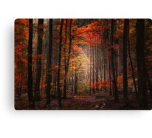 Orton Wood Canvas Print