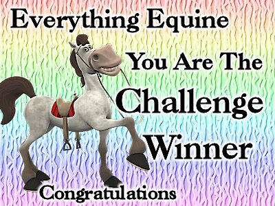 Everything Equine Challenge winner by LoneAngel