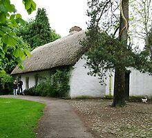 Bunratty Folk Park by Elmacca